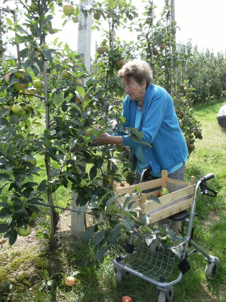 Oma Smorenburg plukte ook graag een appel