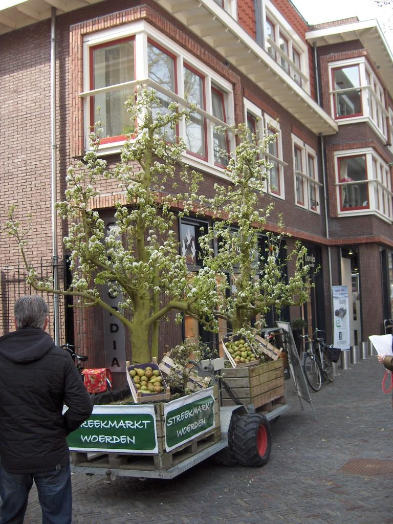 Perenbomen in bloei op de Streekmarkt in Woerden